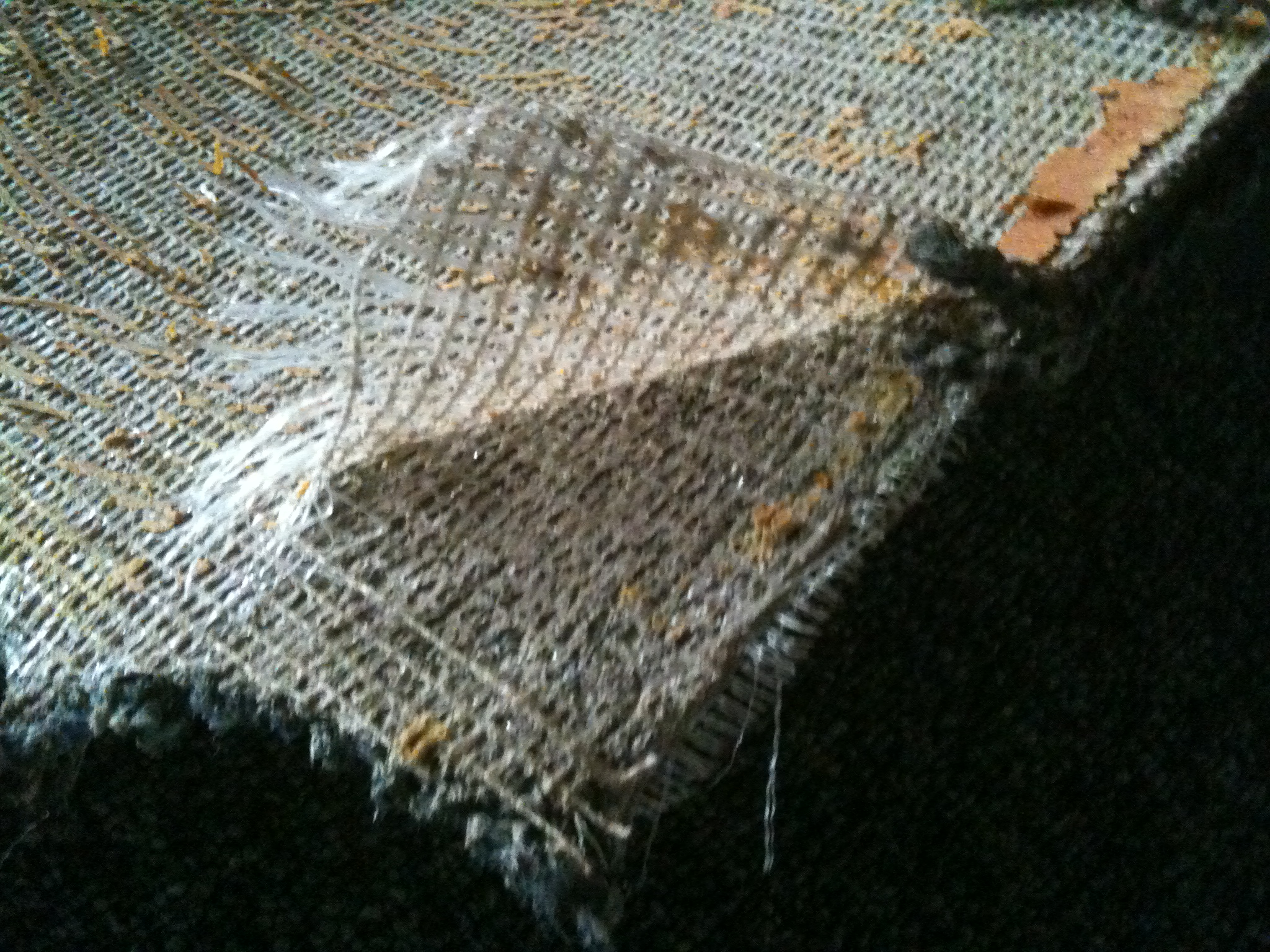 Carpet Delamination