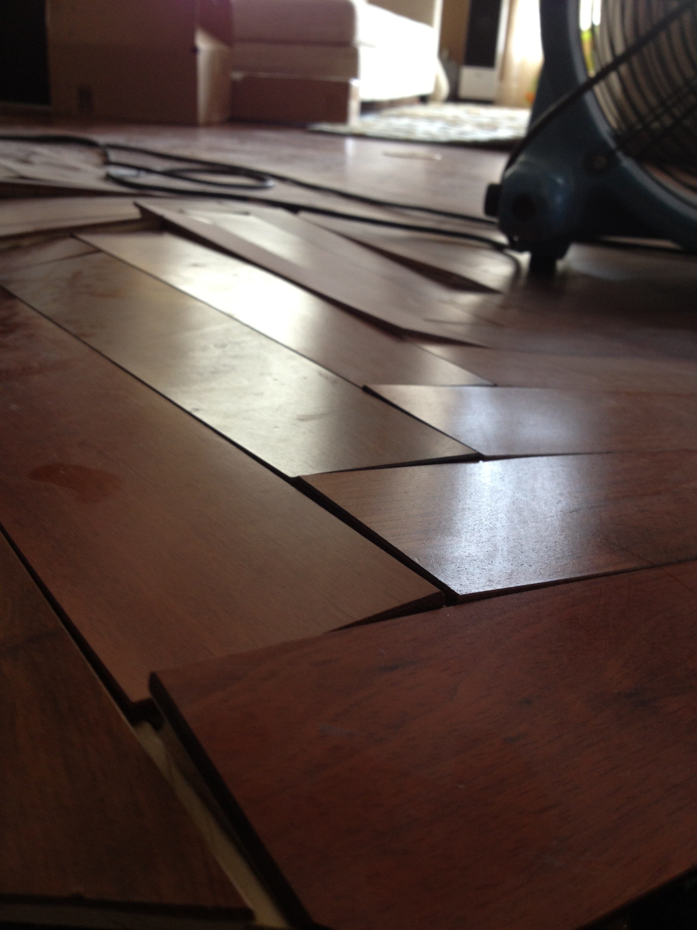 Water Damaged Engineered Floors